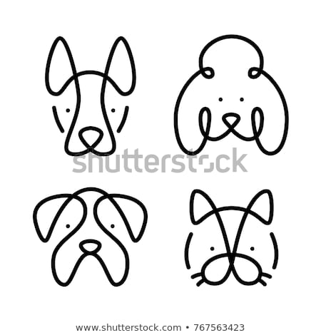 Dier ingesteld portret graphics hond huisdier Stockfoto © FoxysGraphic