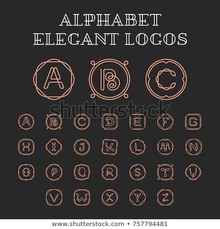 logo letter n or z icon vector symbol element Stock photo © blaskorizov