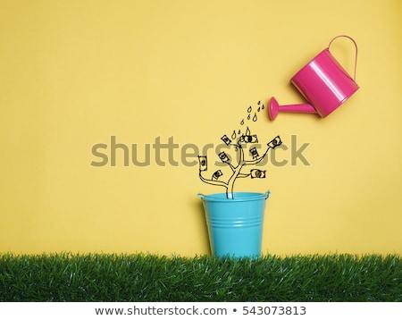 Investering groei business gouden munt geld winst Stockfoto © robuart