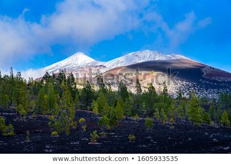 Lasu wulkan widok z lotu ptaka czarny lawa pola Zdjęcia stock © unkreatives