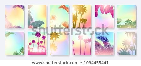 тропические лет вечеринка Flyer дизайна цветок Сток-фото © articular