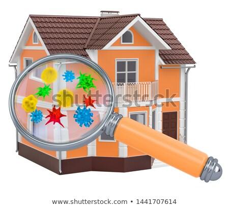 illustration of fungus home Stock photo © adrenalina