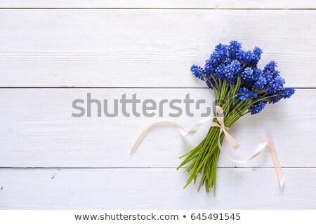 Primavera decoração jardim azul flores metal Foto stock © laciatek