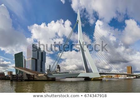 Erasmus Bridge, Rotterdam, Netherlands Stock photo © dmitry_rukhlenko