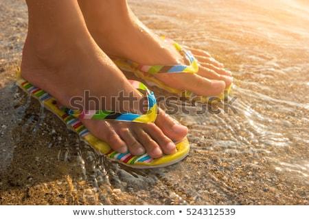 Flip-flops under the Sun Stock photo © Nobilior