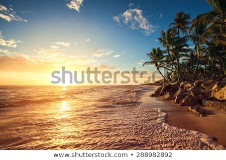 Punta Cana Beach at Dusk Stock photo © ca2hill