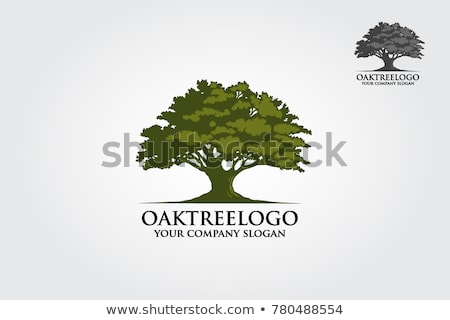 Stock photo: green tree oak as ecology symbol
