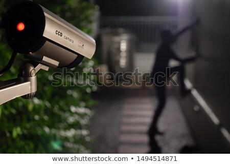 night sneaking stock photo © konradbak