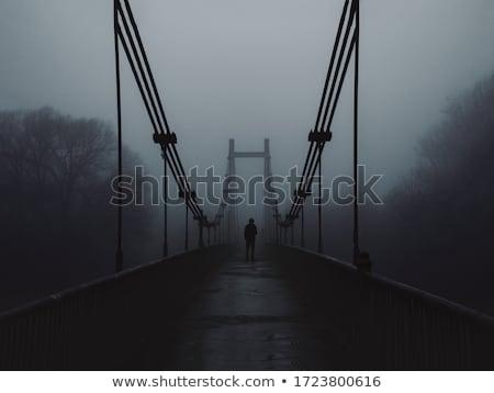 Melancholy Stock photo © zastavkin