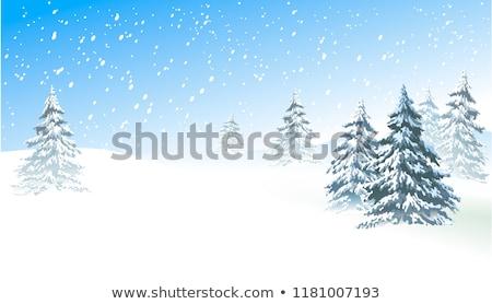 Stok fotoğraf: Snow Tree Vector Background Card