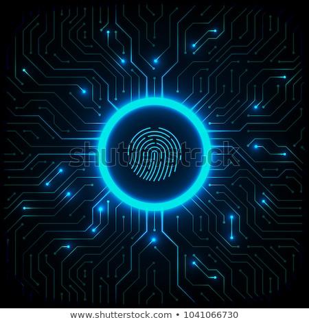 Blue fingerprints in line  Stock photo © wavebreak_media