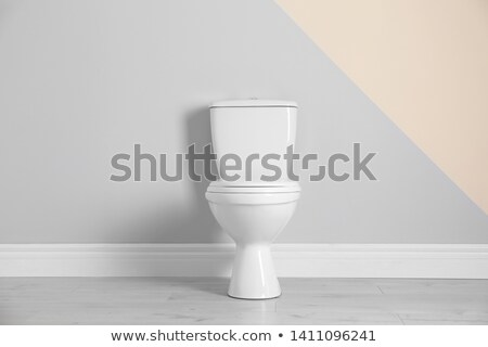 toilet bowl with the closed seat stock photo © blotty