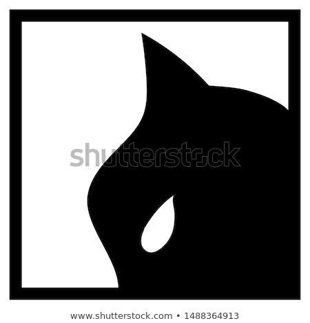 Poseren geïsoleerd witte vrouw kat masker Stockfoto © pxhidalgo