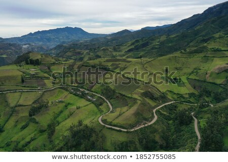 Road through the Andes, of Ecuador Stock photo © pxhidalgo