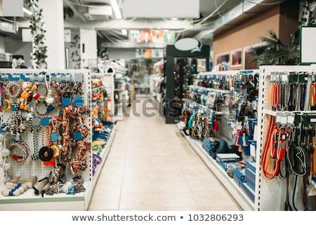 fogyasztó · macska · bevásárlókocsi · fehér · szomorú · bolt - stock fotó © adrenalina