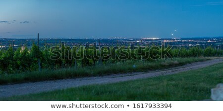 view over fields to the skyline of frankfurt stock photo © meinzahn