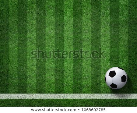 soccer ball in the corner of field stock photo © cherezoff