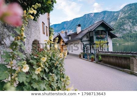 Historische architectuur Oostenrijk Europa huis gebouw stedelijke Stockfoto © Spectral