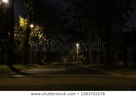 suburb at night Stock photo © tracer