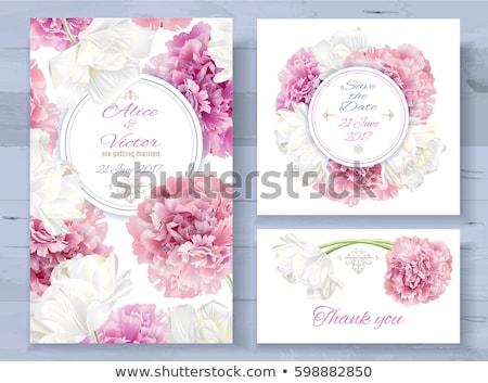 ingesteld · bloem · groet · kaarten · luxueus · geschilderd - stockfoto © voysla