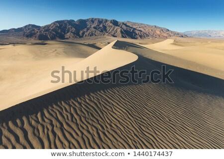 песок пустыне смерти долины Калифорния трава Сток-фото © meinzahn