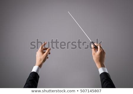 Music Conductor's Hand Holding Baton Stock photo © AndreyPopov