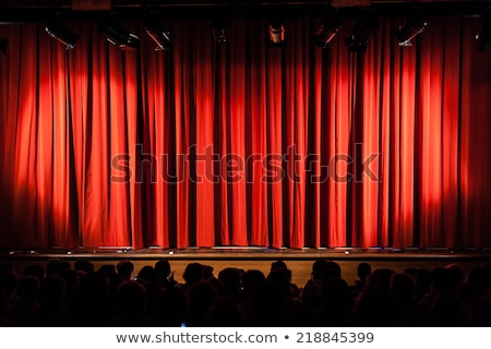 stage with closed curtains and spotlights Stock photo © SArts