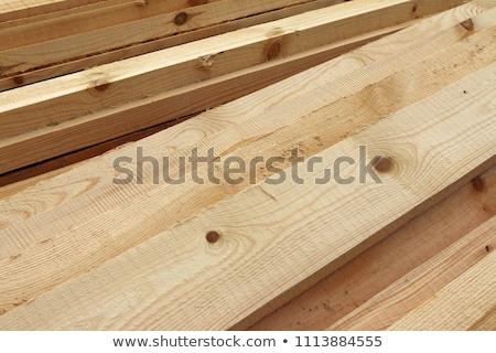 Coniferous wood Stock photo © Kotenko