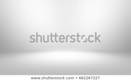 Empty White Photo Studio Interior Background. Studio Backdrop. Vector Illustration. Stock photo © pikepicture