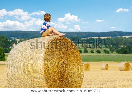Young boys sitting on hay bales Stock photo © IS2
