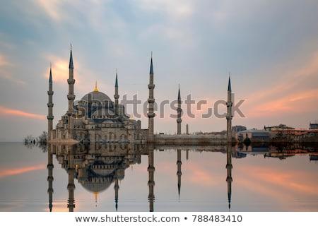 Mavi cami İstanbul Türkiye kule mavi gökyüzü Stok fotoğraf © artjazz