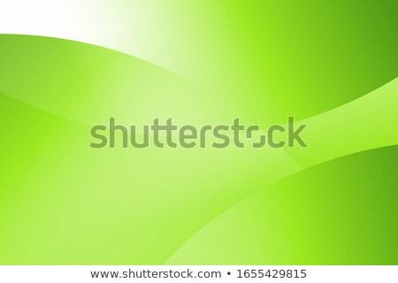 Absztrakt zöld vonalak papír divat fény Stock fotó © sidmay