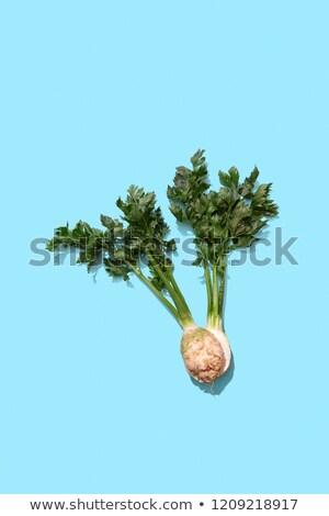 петрушка · свежие · тень · продовольствие · лист - Сток-фото © artjazz