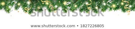 Natale decorazioni evergreen ramo primo piano Foto d'archivio © marylooo
