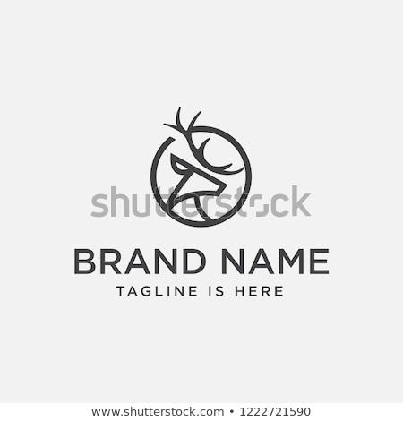 Geyik logo ikon vektör imzalamak simge Stok fotoğraf © blaskorizov