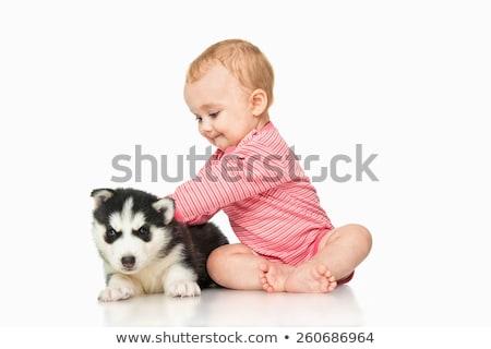 baby · jongen · pluche · hond · witte · speelgoed - stockfoto © lopolo