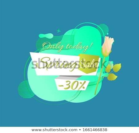 весны продажи рекламный Label 30 процент Сток-фото © robuart