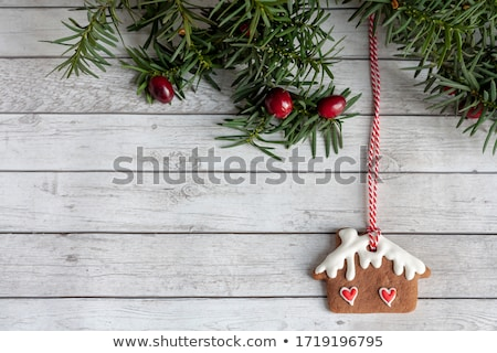 close up of christmas gingerbread houses Stock photo © dolgachov