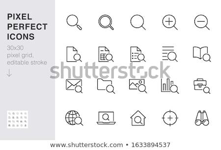 Engine Magnifier Icon Vector Outline Illustration Stok fotoğraf © Nadiinko