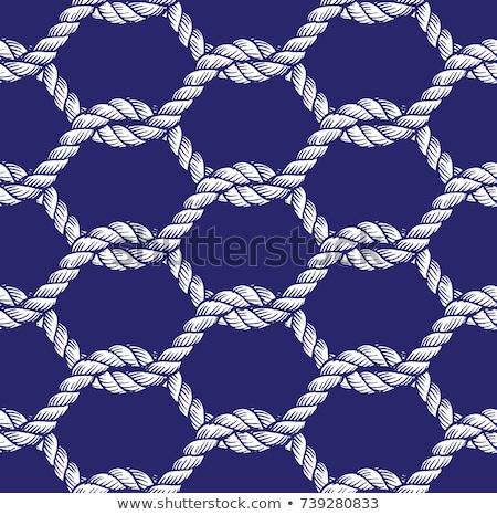kötelek · végtelen · minta · vektor · terv · kábel · tapéta - stock fotó © Sylverarts