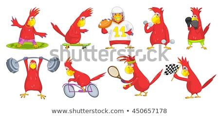 Funny Parrot. Rugby Stock photo © RAStudio
