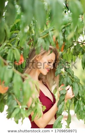 mulher · toranja · mãos · ver · sessão - foto stock © stryjek