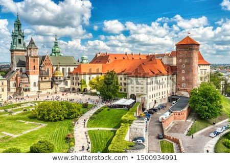 katedrális · királyi · kastély · Krakkó · Lengyelország · égbolt - stock fotó © andreykr