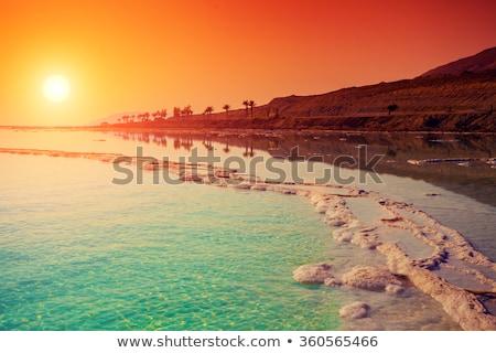 Landschaft · Sommer · Tag · Strand · Wasser - stock foto © kyolshin