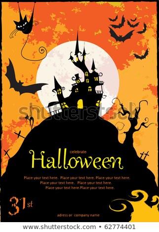 halloween · porta · cat · sfondo · web · blu - foto d'archivio © beholdereye