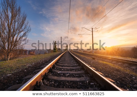 railroad track in sunlight stock photo © meinzahn