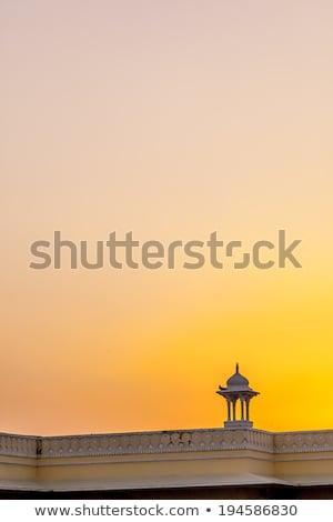 festői · nagy · fa · sziluett · naplemente · mező - stock fotó © meinzahn