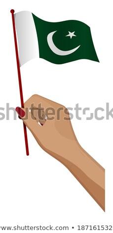 Pakisztán kicsi zászló térkép szelektív fókusz háttér Stock fotó © tashatuvango