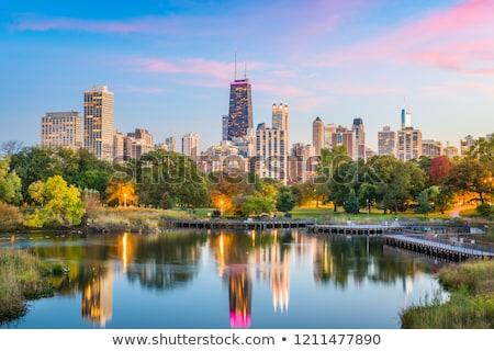Chicago Illinois alan ufuk çizgisi göz Stok fotoğraf © iofoto