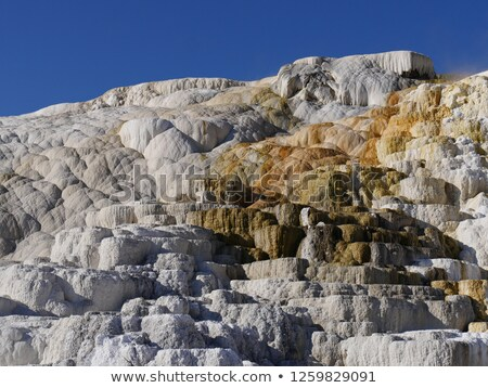 Mammoth Hot Springs in Northern part of Yellowstone National Par Stock photo © tab62